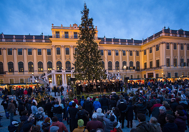 private transfers from vienna airport to schonbrunn christmas market by taxi, limousine, minivan, minibus and coach